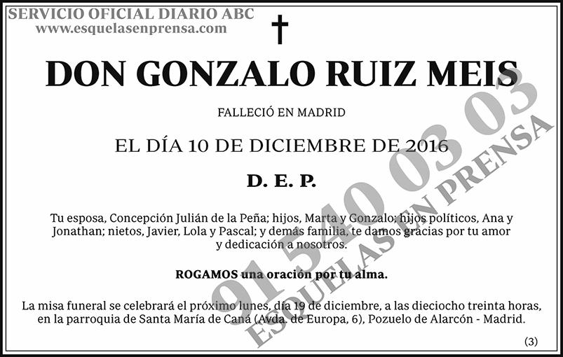 Gonzalo Ruiz Meis